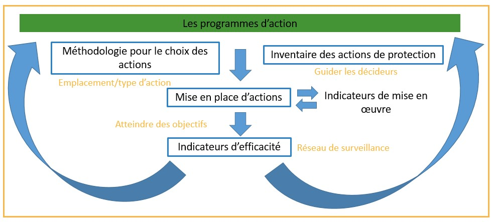 Programme d'actions