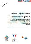 Définition d'une méthodologie commune aux études des bassins d'alimentation de captages à Mayotte. Principes de délimitation des bassins et de caractérisation de la vulnérabilité des captages. Rapport final.