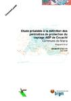 Etude préalable à la définition des périmètres de protection du captage AEP de Couachi. Commune de Mana. Rapport final.