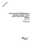 Etude du bassin d'alimentation du captage de Longoni- bassin versant du Mro Oua Longoni- Mayotte. Rapport final.