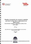Situation et prospective des ressources exploitées par bassin versant dans le département de la Haute-Savoie. Caractérisation d'aquifères significatifs au niveau d'une petite région.